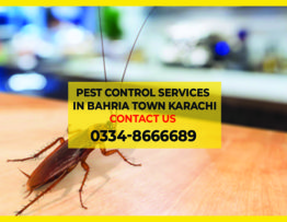 Pest Control Services In Bahria Town Karachi